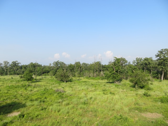 Bardia Nationalpark